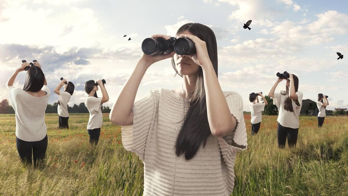 The 5 Best Binocular Brands for New Birders