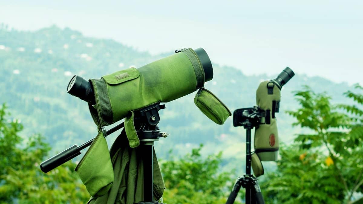 Birds Photo: The Best Spotting Scope Adapters